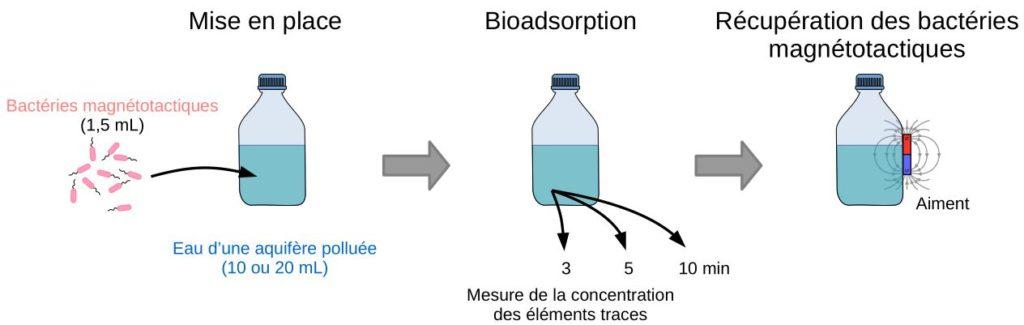 Schéma du protocole de traitement de l'eau pollué.